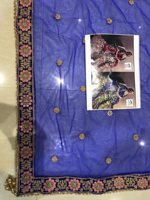 Blue Velvet Choli MC 1071 E